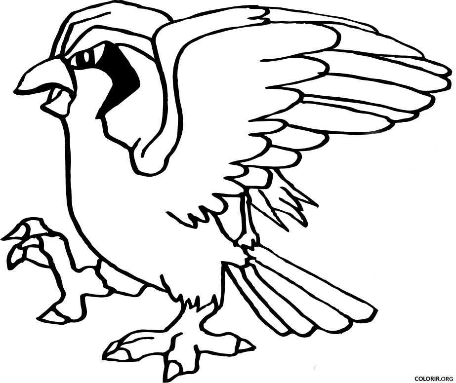 Pokémon: Pidgeot para colorir