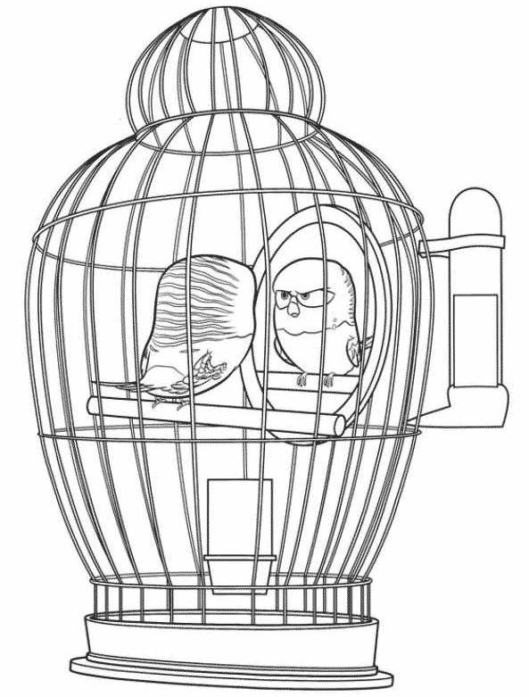 Docinho, o passarinho, para colorir