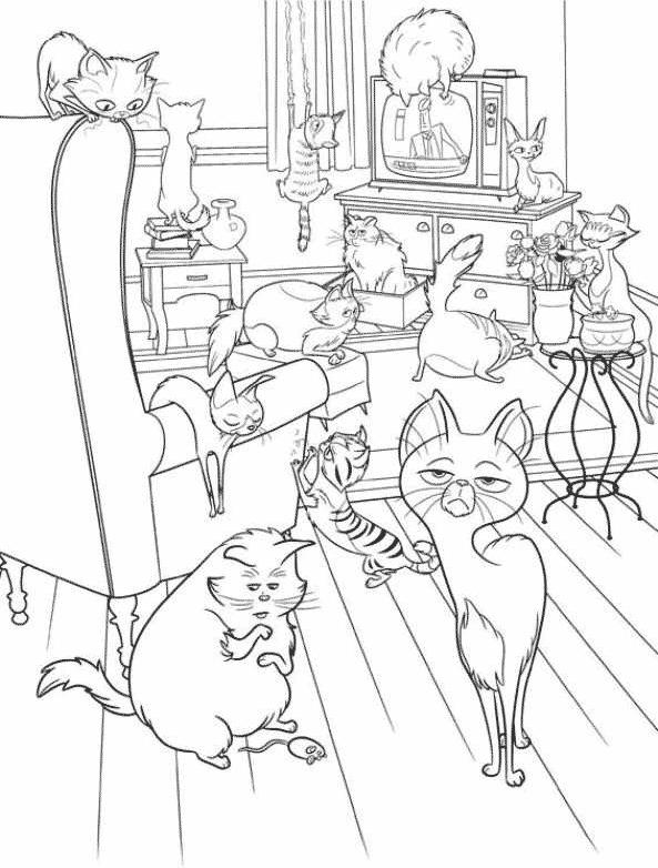 Gatos em pets o filme for Secret life of pets printable coloring pages