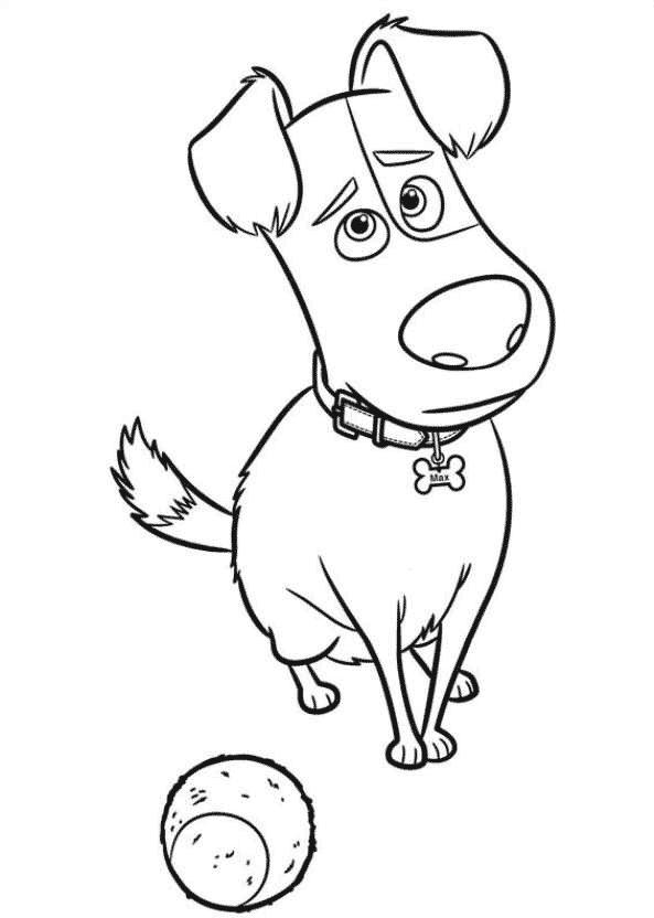 Desenho do Max com bolinha para colorir