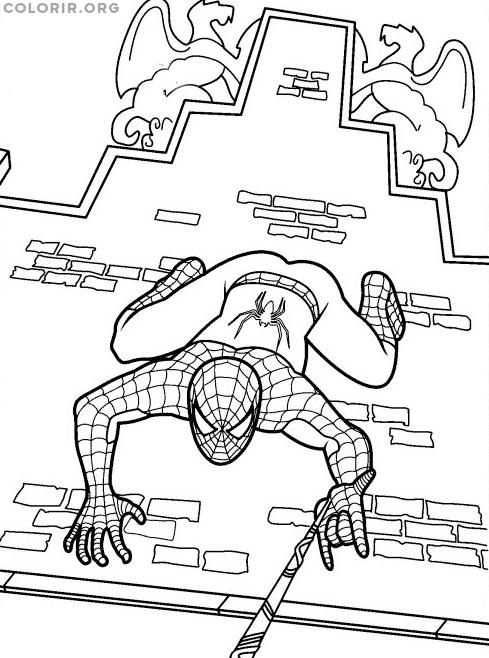 Homem Aranha descendo parece