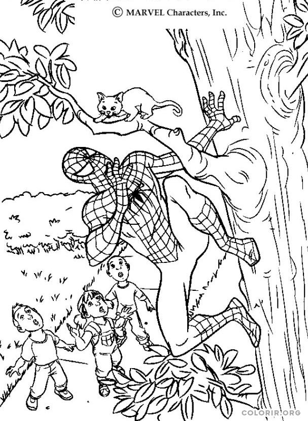 Homem Aranha salvando gatinho em árvore