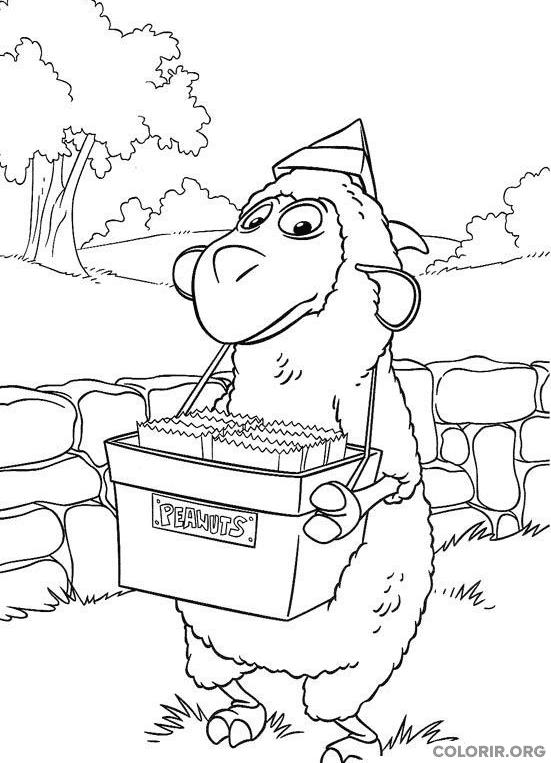 Wiley vendendo amendoim