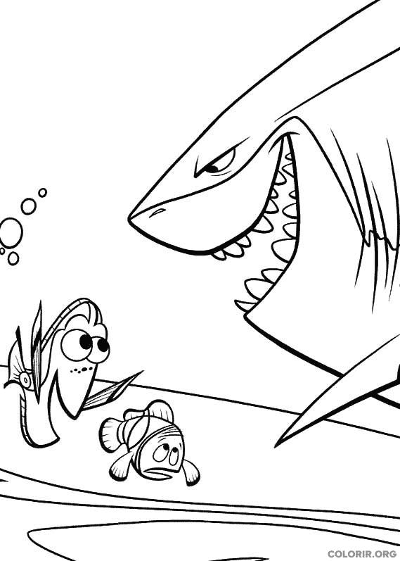 Desenho de Procurando Nemo (10)