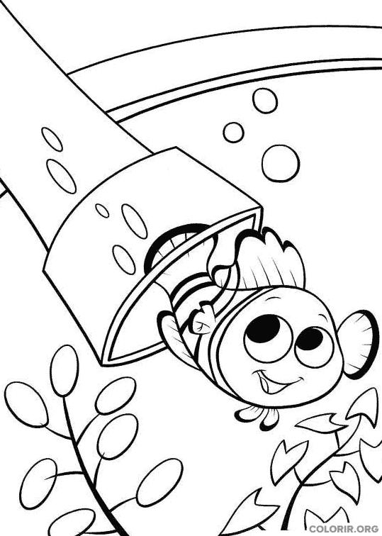 Desenho de Procurando Nemo (24)