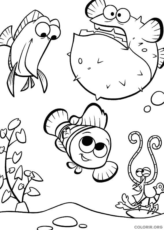 Desenho de Procurando Nemo (6)
