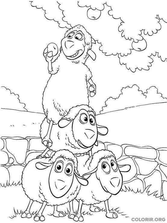 Wiley se aproveitando das outras ovelhas